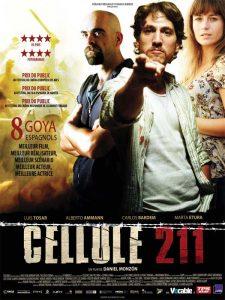 2010_114_cellule-211